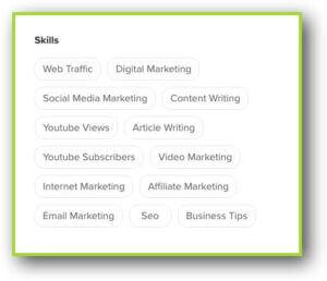 Fiverr Profile Skills